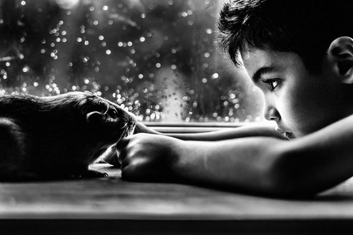 Картинки по запросу Трогательные фотографии детей с животными