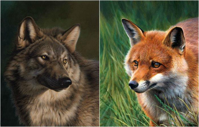 Реалистичные картины с изображением представителей дикой природы.