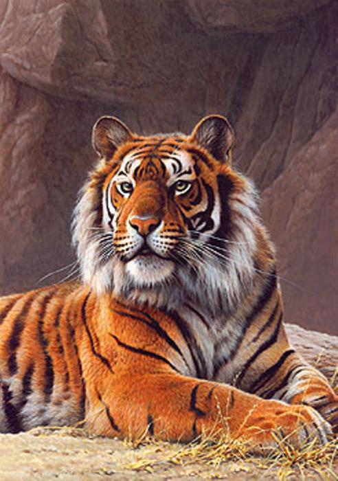 Яркий окрас животного мастерски передан художником.