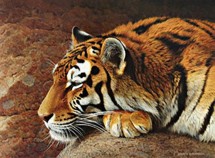 Тигр, нарисованный художником, во всей красе.