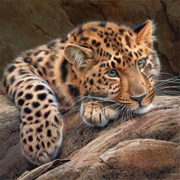 Изумрудные глаза гепарда - самого быстрого животного в мире.