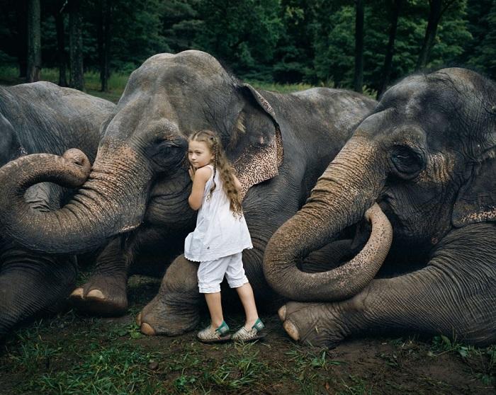Друзья этой маленькой девочки в 10 раз больше ее самой, но с таким же добрым сердцем. Фотограф Robin Schwartz.