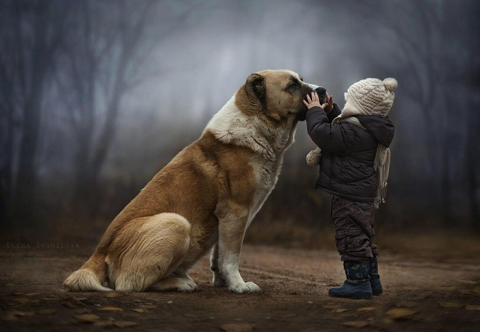 Настоящая забота — следить, чтобы твой друг не замерз! Фотограф Елена Шумилова (Elena Shumilova).