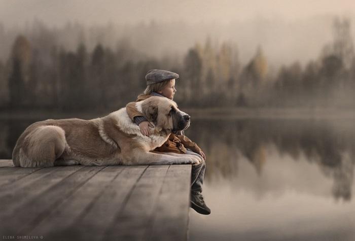 Они однажды нашли друг друга и с тех пор не расставались. Фотограф Елена Шумилова (Elena Shumilova).