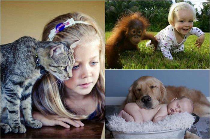 Внутренняя доброта и бесстрашие детей.