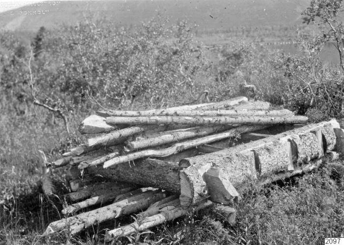 Дрова заготовленные для переправы через реку.
