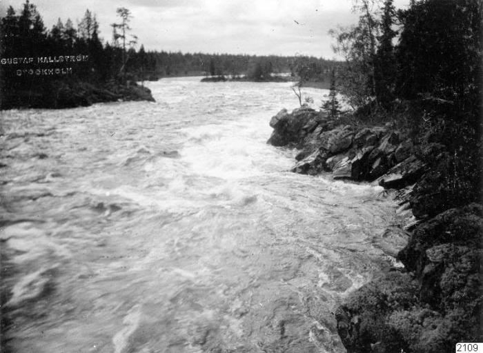 Горная река. Россия, Архангельская губерния, 1910 год.