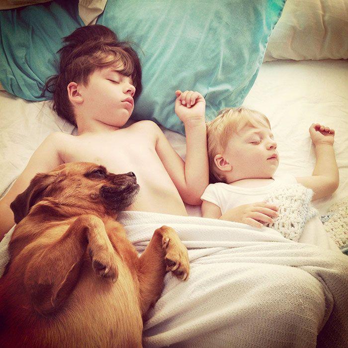 Каждый ребенок должен расти с домашними животными.