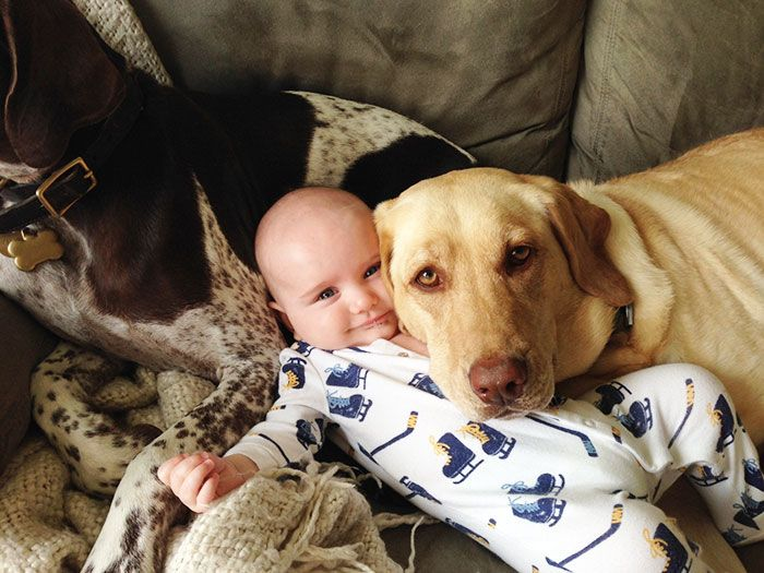 Малыш и его большие друзья.