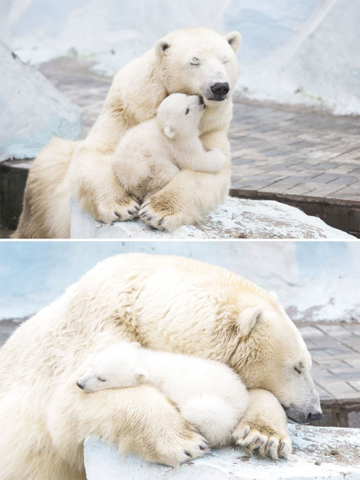 Заботливые мамины объятия согреют в зимнию пору.