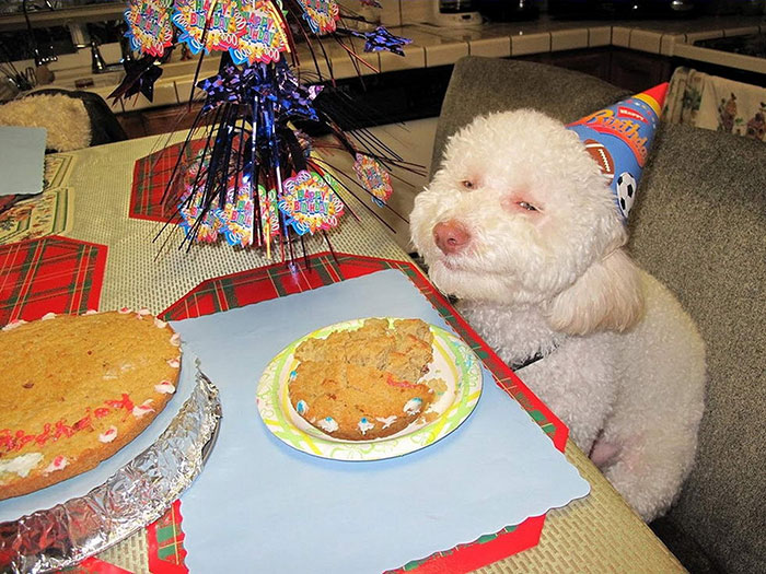 Ура, для меня испекли торт!!!