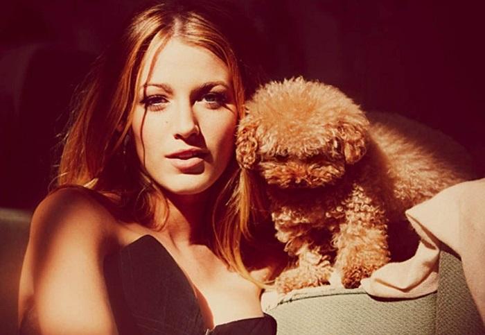 Между американской актрисой и питомцем Пенни установилась прочная связь, которую невозможно разрушить.