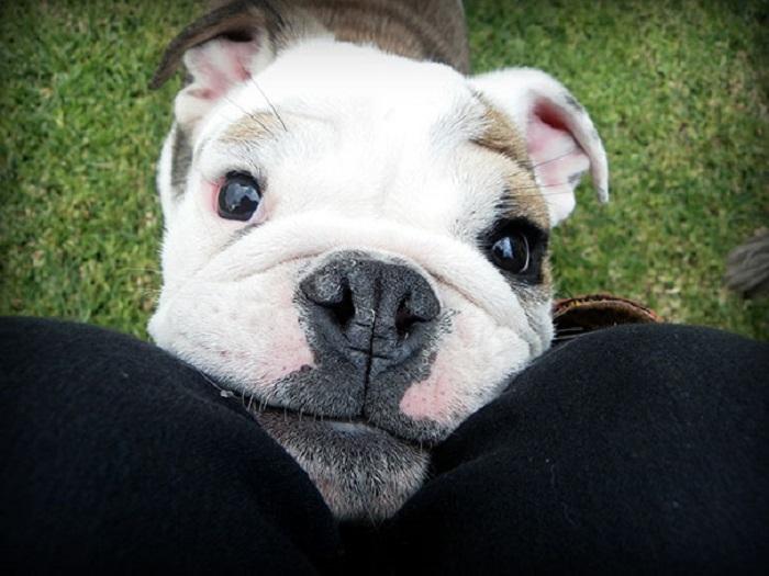 Посмотри мне в глаза.