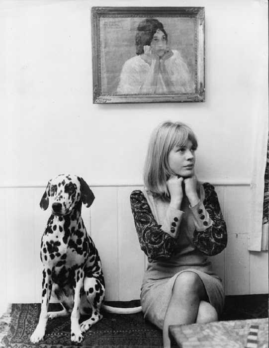 Британская певица со своим любимцем далматинцем.
