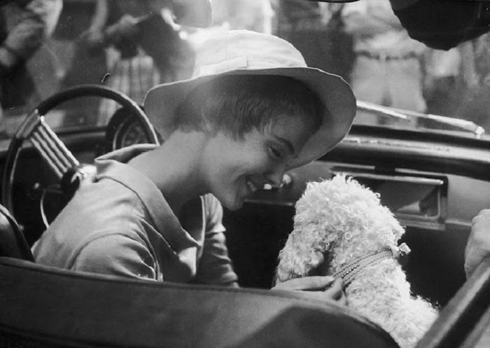 Американская киноактриса приехавшая на съёмки с любимым псом.