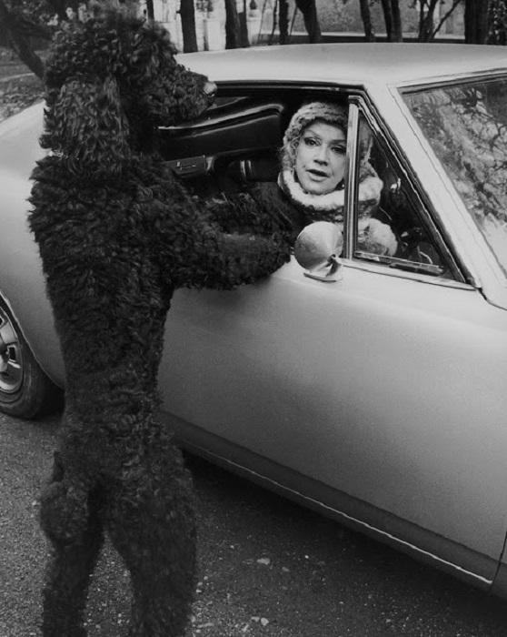 Дороти с любимым пуделем Джейсоном.