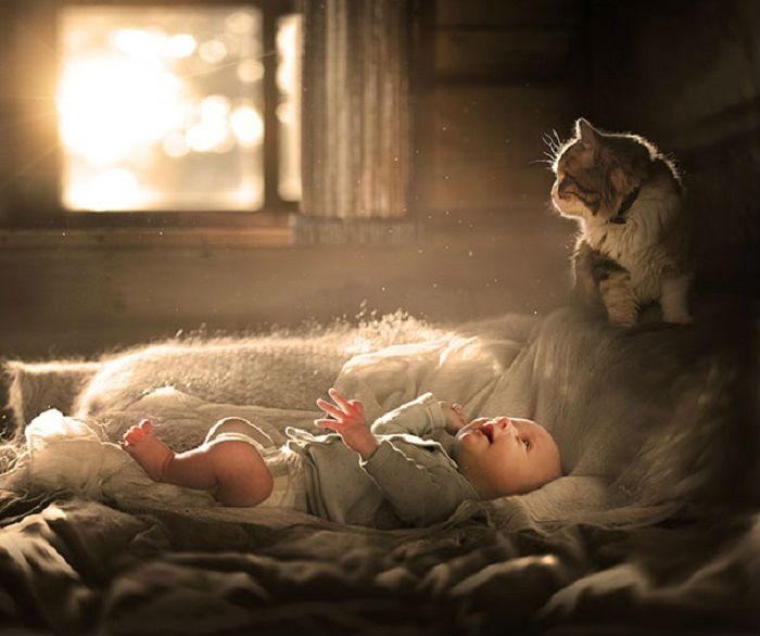 С котом можно вырасти вместе...