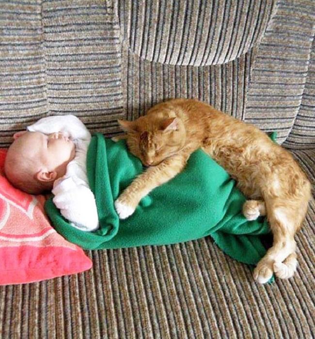 Какое-то тоненькое одеяло тебе выдали, дай я тебя погрею.
