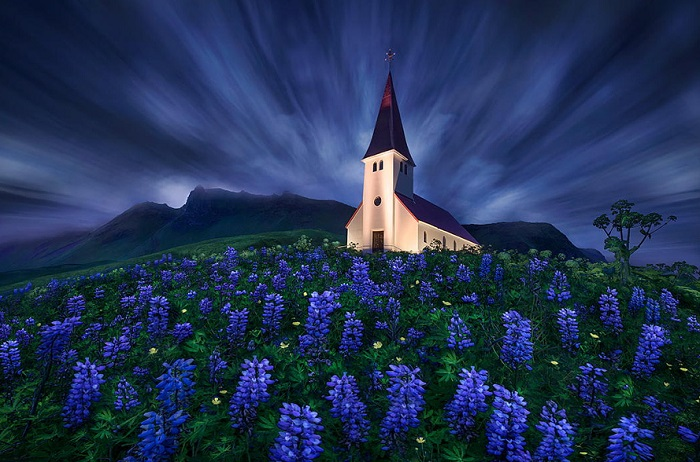 Главной достопримечательностью Вика считается стоящая в уединении живописная белая церквушка с красной крышей.