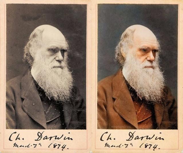 Ученый, заложивший основы современной эволюционной теории.