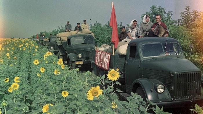 Свободные и счастливые советские люди.