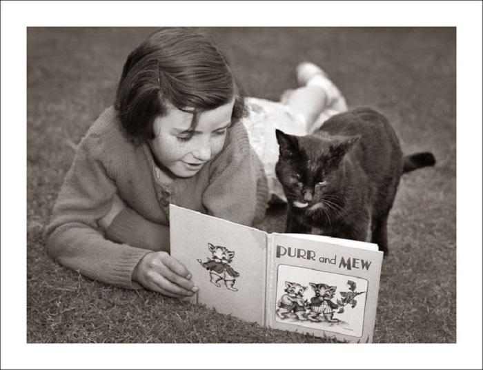Сказки для кота.