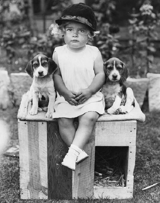 Маленькая девочка с друзьями-щенками, 1934 год.