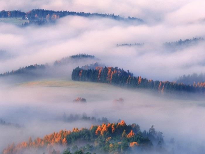 Завораживающая красота несмотря даже на туман.
