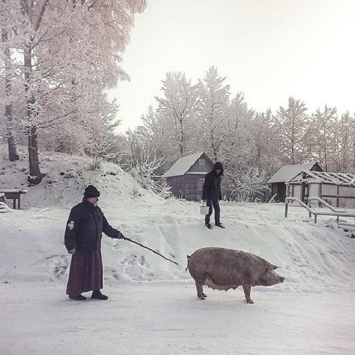 Поселок Дедовичи в Псковской области, Россия.