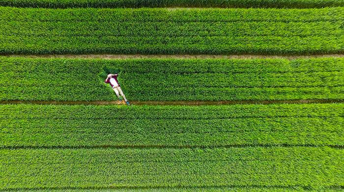 Шаньдун, Китай. Фотограф AmbroseLune.