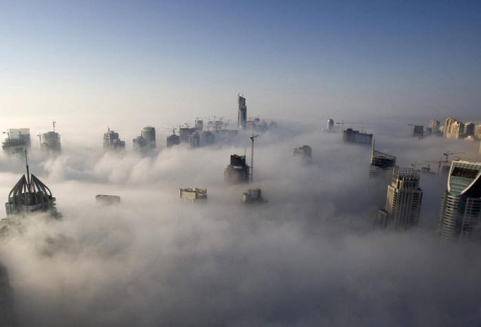 Густой туман редко встречается в Дубае, его можно наблюдать 4 – 6 раз в году. Фотограф Стив Крисп (Steve Crisp).
