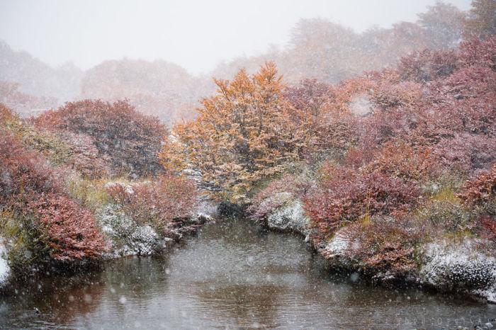 Гармония и красота ноябрьского пейзажа.