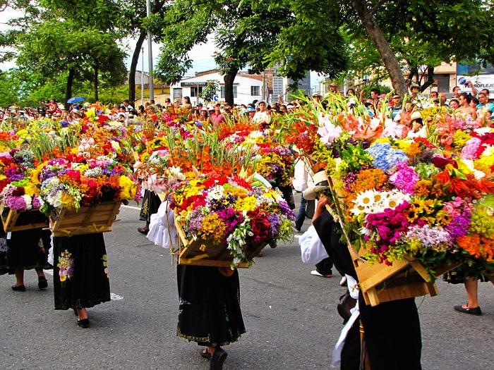 Тысячи носильщиков silleteros «оседланные», несут на спине в деревянных силлетах большие украшения из живых цветов.