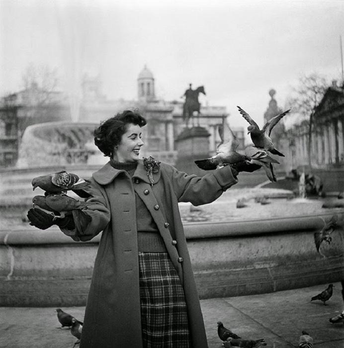 Элизабет Тейлор в окружении голубей на Трафальгарской площади, Лондон, ноябрь 1948 года.