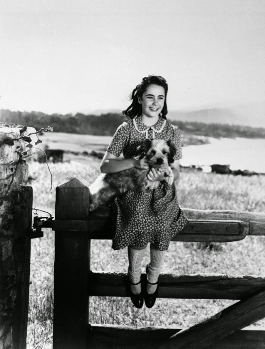 Элизабет на съёмках фильма «Национальный бархат», 1944 год.