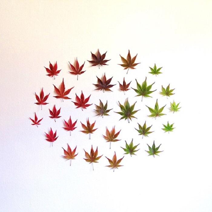 Осенний хоровод цветов.