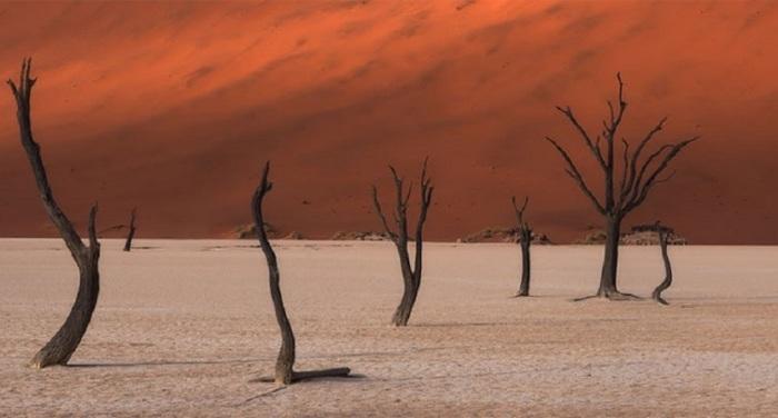 7-е место в любительской категории «Природа/Пейзаж» занял фотограф из ЮАР Стюарт Беллами (Stuart Bellamy).