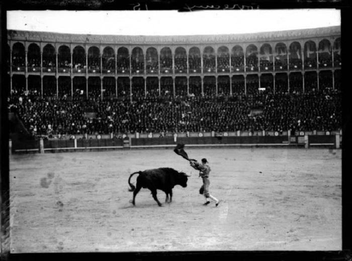 Наиболее распространённая форма боя быков. Испания, Мадрид, 1908 год.