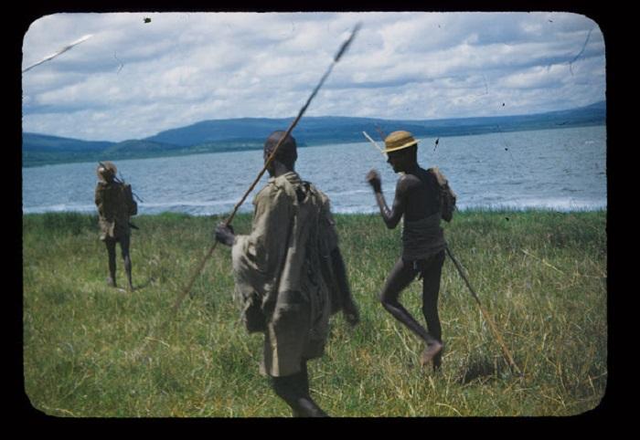 Эфиопские парни идут на охоту с длинными самодельными копьями.