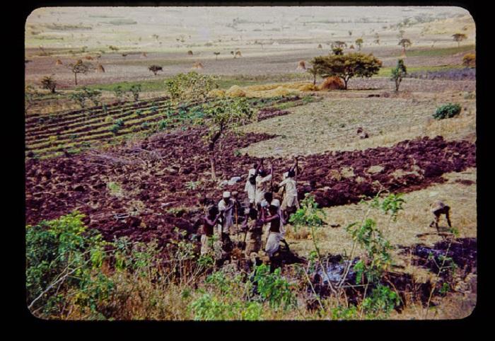 Подготовка поля к сельским работам.