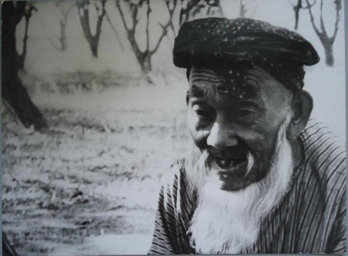 Мужчина в годах, посвятивший свою жизнь уходу за фруктовым садом.