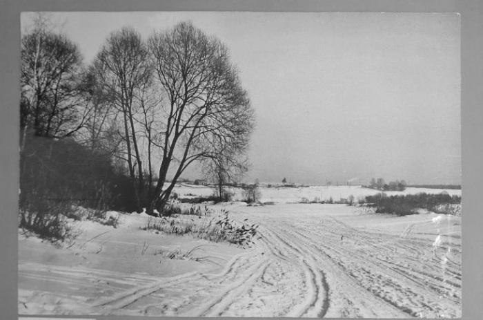 Солнечный зимний день на проселочной дороге.