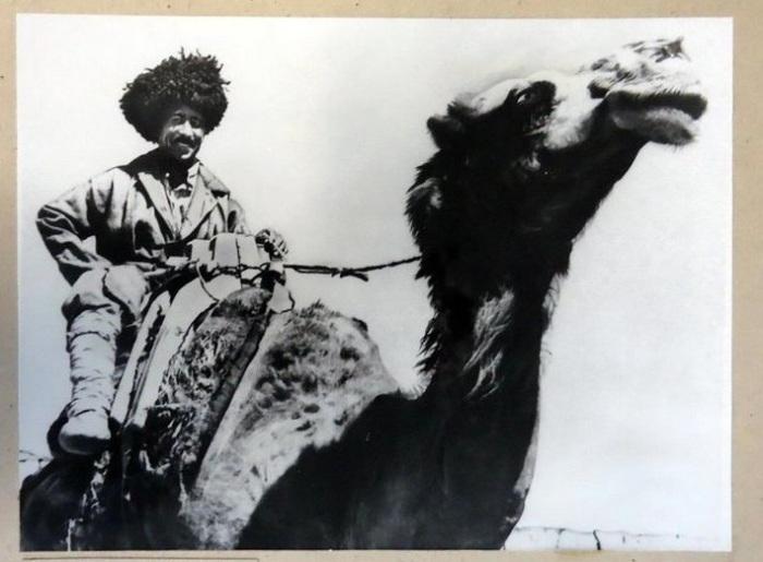 Наездник на верблюде в объективе фотографа Георгия Аргиропуло.
