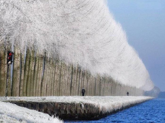Удивительная красота зимнего пейзажа.