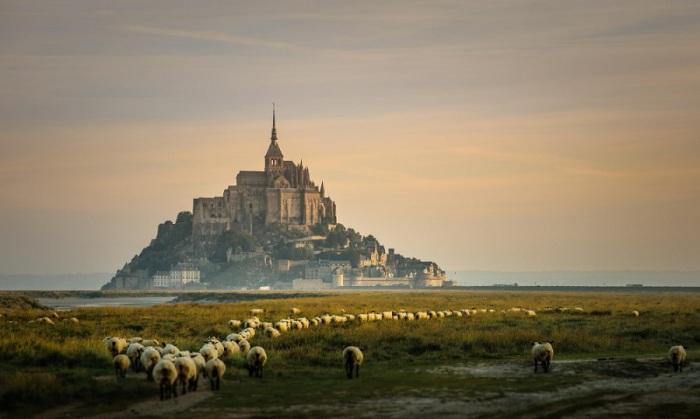 Небольшой скалистый остров, превращённый в остров-крепость, на северо-западном побережье Франции. Остров является единственным обитаемым из трех гранитных образований бухты Сен-Мишель.