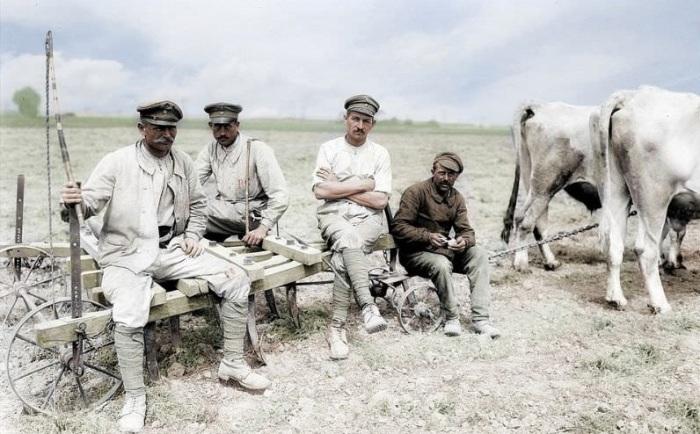 Немецкие заключенные, вынужденные трудиться на полевых работах.