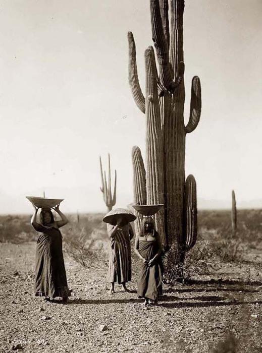 Экзотика необъятной пустыни.