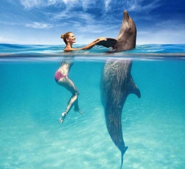 Когда человек и дельфин могут быть на равных.