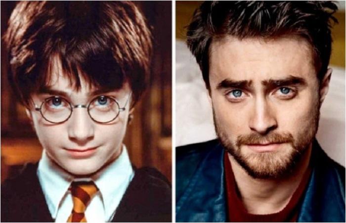 Любимые актёры «Гарри Поттера».