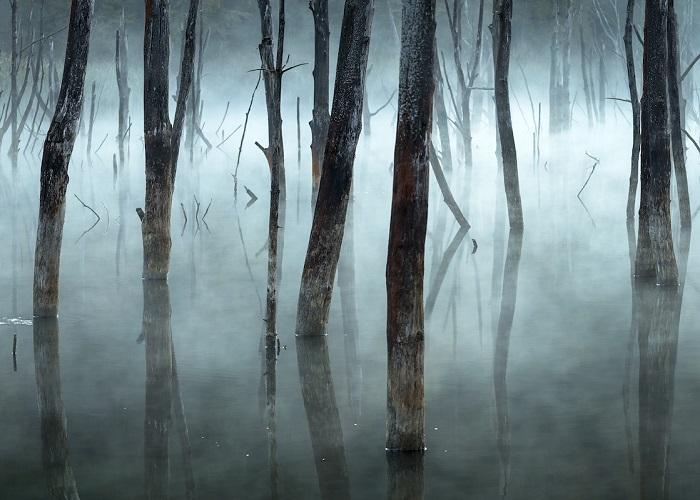 Поощрительным призом в категории «Пейзажи» награжден румынский фотограф Георг Попа (Gheorghe Popa).
